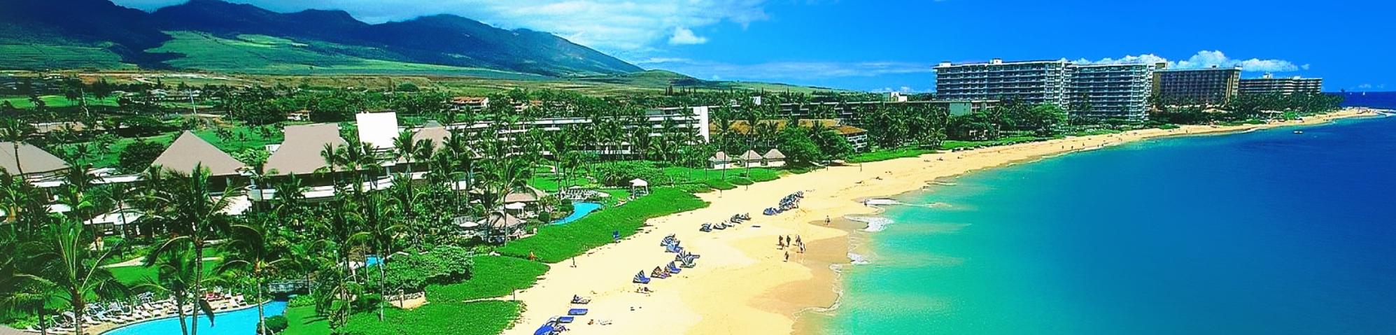 hawaiicondo2-bg
