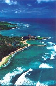 turtle_bay2