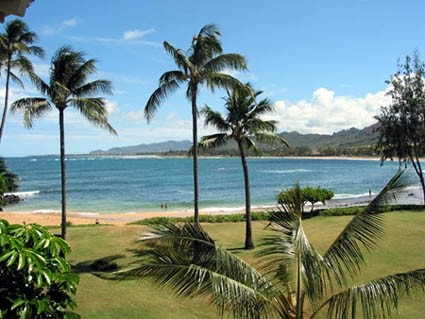 Stunning Beachfront Hawaii Condo Rentals